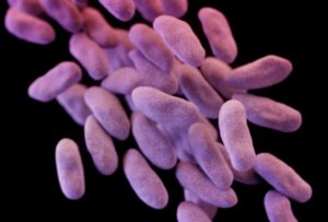 CRE-MRSA - courtesy Washington Post